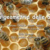 Geometria delle api